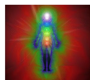 Der Emotionalkörper