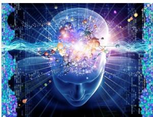 Der Egoistische Verstand