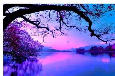 Heilende Natur