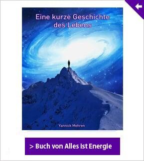 AIE-Buch-Sidebar-Banner