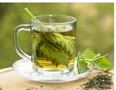 Brennessel Tee - Heilend und entgiftend