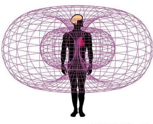 der-menschliche-torus