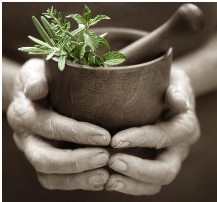 natur-ist-unsere-medizin