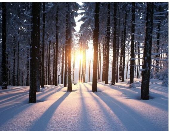 winter-magische-zeit