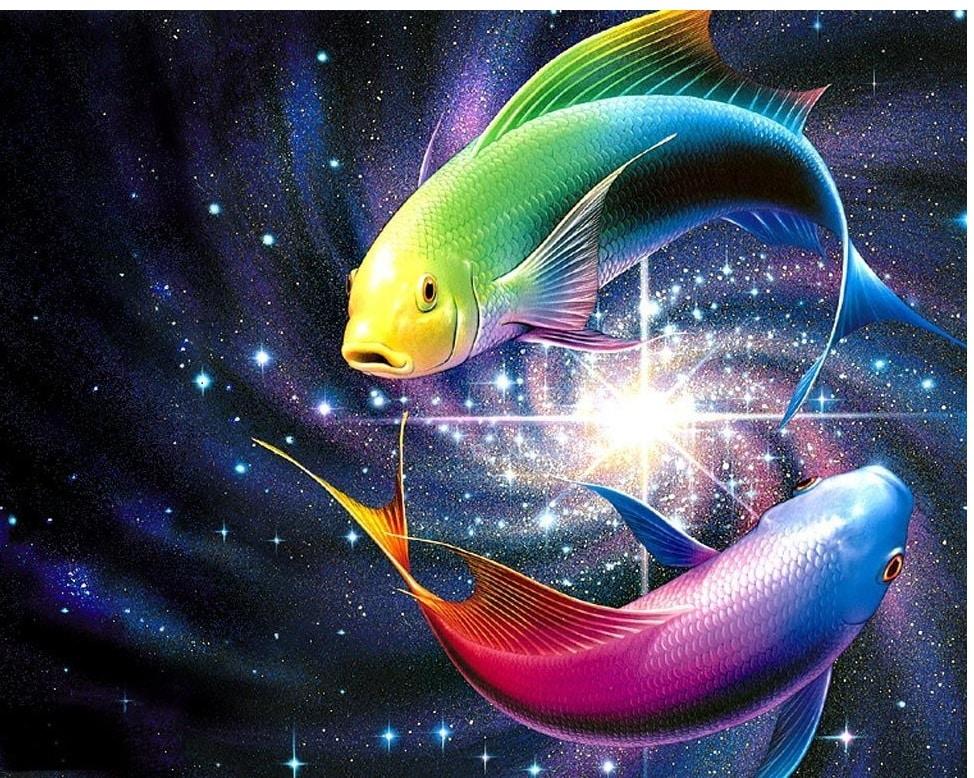Fische Tierkreis - Veränderung