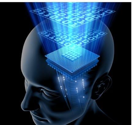 Die Vernetzung unseres Geistes