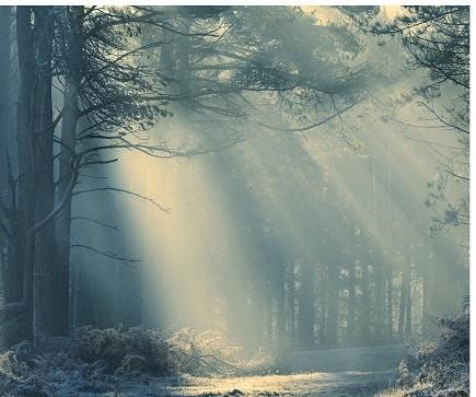 Tagesenergie - Ein harmonischer Tag