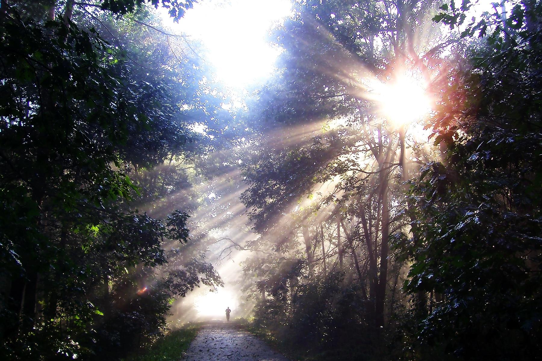 Sonne im Sternzeichen Wassermann