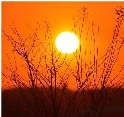 Geht in die Sonne