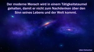 Albert Schweitzer Zitat Taumel